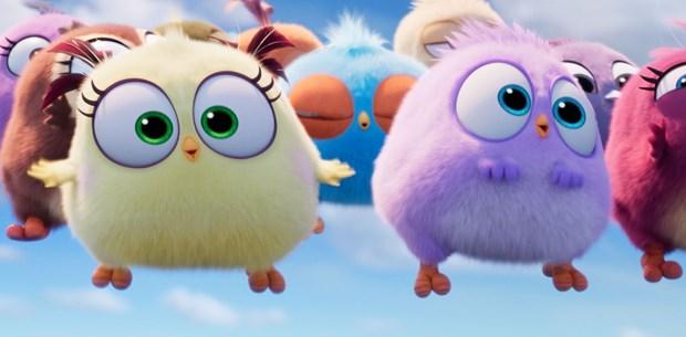 Angry Birds 2 fragmanı