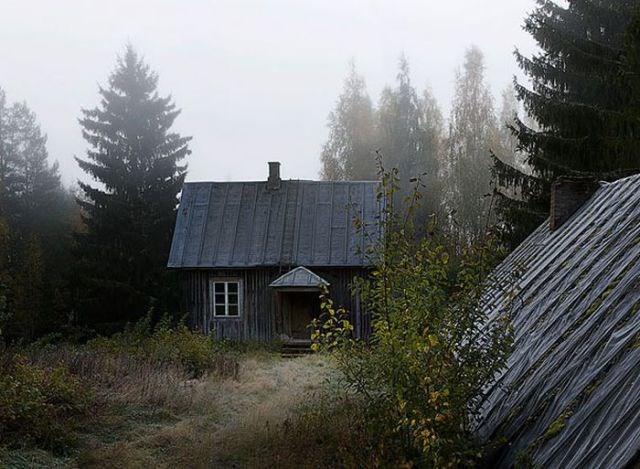 Terk edilmiş evlerin yeni sahipleri