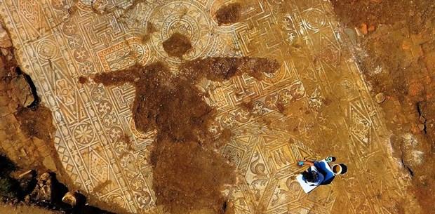 Troas bölgesinin açığa çıkarılmış en büyük ve en sağlam mozaiği