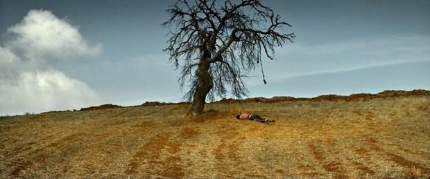 Türkiye'nin Oscar adayı: Nuri Bilge Ceylan'ın Ahlat Ağacı