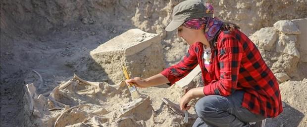 Van'da 2 bin 800 yıllık at iskeleti bulundu