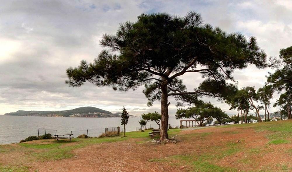 İstanbul'un Tabiat Parkları (İstanbul'daki tabiat parklarının listesi ve isimleri) - 8
