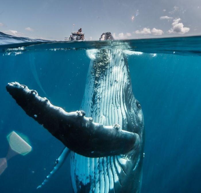 2019 National Geographic Seyahat Fotoğraf Yarışması, national geographic fotoğraf yarışması