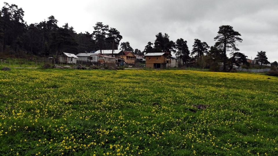 Kar yağışı, ilkbahar mevsimi, Gölcük Tabiat Parkı Bolu