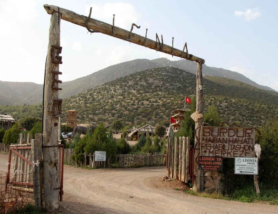 lisinia doğal yaşam köyü, lisinia doğa, burdur gezilecek yerler, öztürk sarıca, lisinia doğa proje alanı