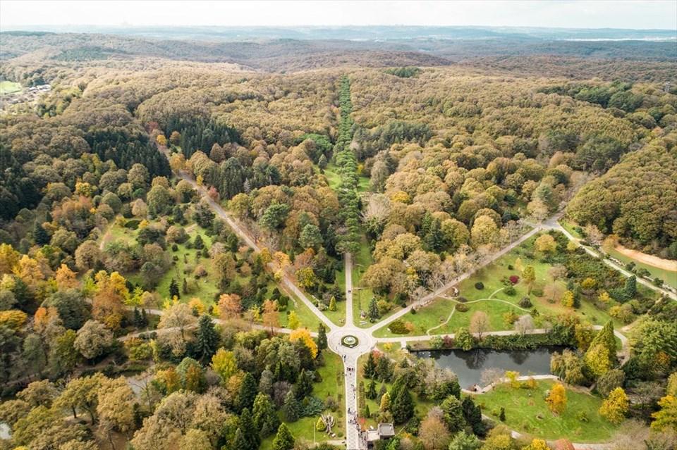 atatürk arboretumu, canlı ağaç müzesi, belgrad ormanları, istanbul'a yakın gezilecek yerler, istanbul'a yakın hafta sonu gidilebilecek yerler