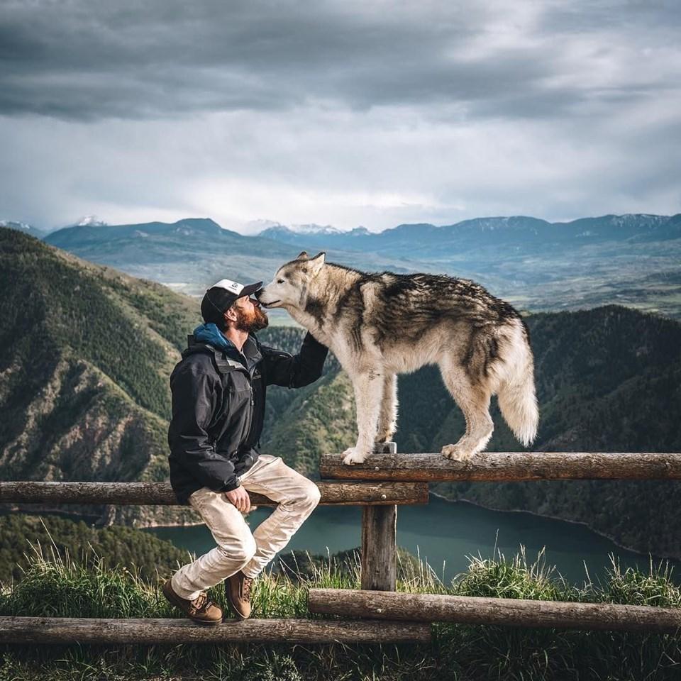loki the wolfdog, dünyayı gezen köpekler, instagram fenomeni köpekler, gezgin köpekler, kampçı köpekler
