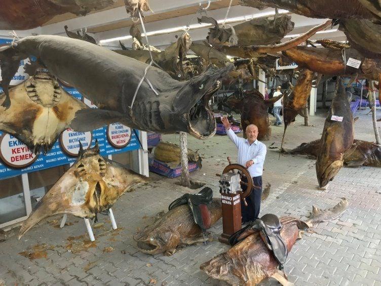 Türkiye Deniz Canlıları Müzesi
