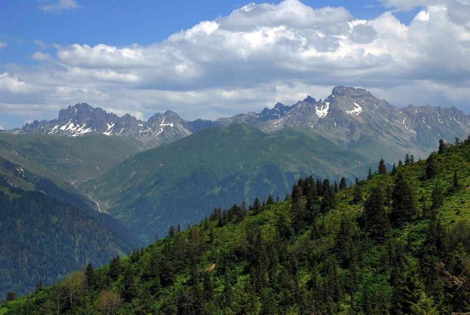 rize, kaçkarlar, kaçkar dağları, Kaçkar Dağları Milli Parkı, erzurum, doğasever, bitki türleri, artvin, alternatif tatil, milli parklar