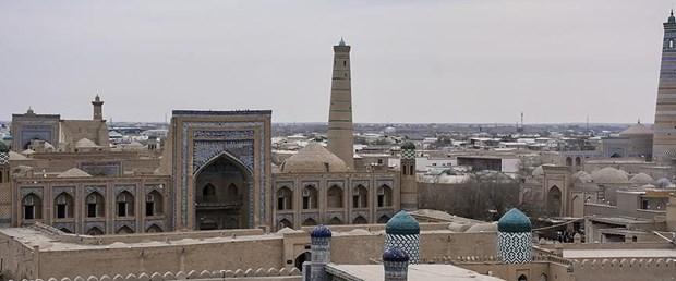 ozbekistan-hive-1.jpg