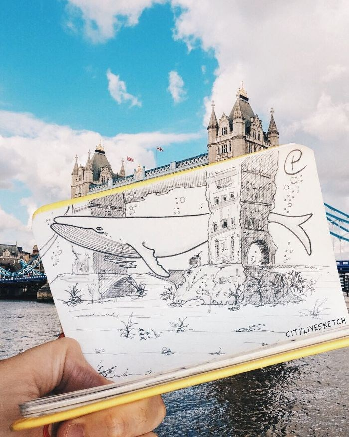 Pietro Cataudella, Citylivesketch