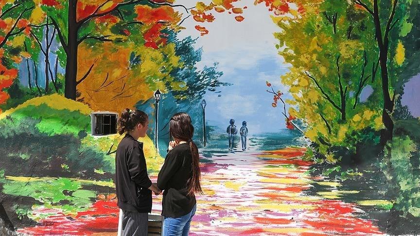 sokak sanatı, duvar resimleri, duvar çizimleri, van başkale, başkale belediyesi, başkale ilçesi nerede