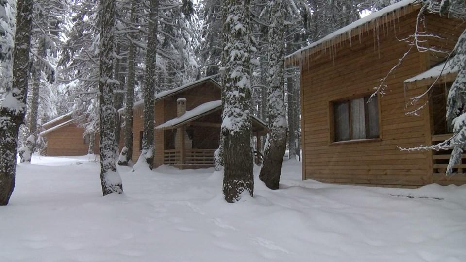 uludağ orman köşkleri, karinna orman köşkleri, uludağ bungalov, turist, seyahat, tatil, otel