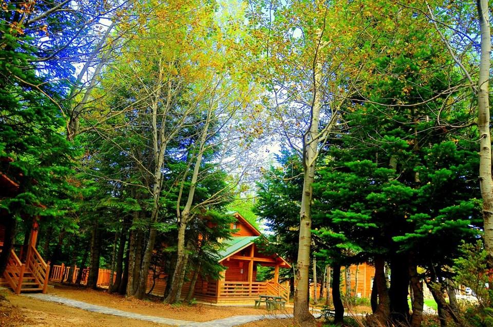 uludağ orman köşkleri, uludağ otel önerisi, uludağ konaklama, uludağ sarıalan konaklama