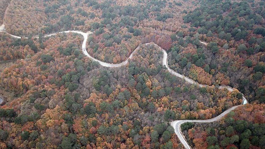 yalova gezilecek yerler, yalova kent ormanı, teşvikiye, çınarcık, yalova sonbahar fotoğrafları