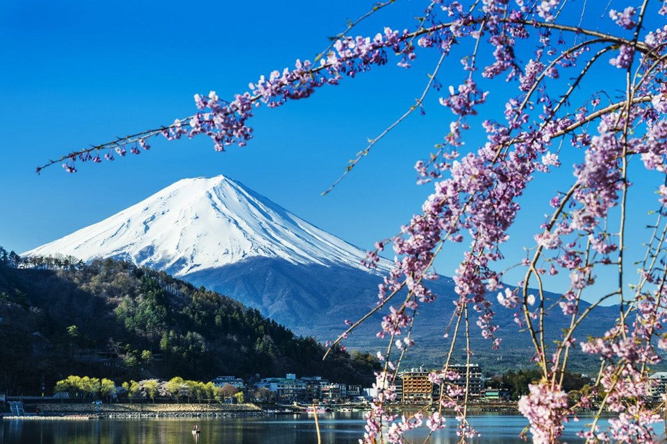 Budizm, Fuji dağı, Japonya, Tokyo, sake, Şintoizm, Suşi, Tokyo Tapınaklar, Tokyo'da Yeme İçme, Tokyo gezi rehberi, tokyo rehberi, tokyo gezilecek yerler, tokyo görülecek yerler