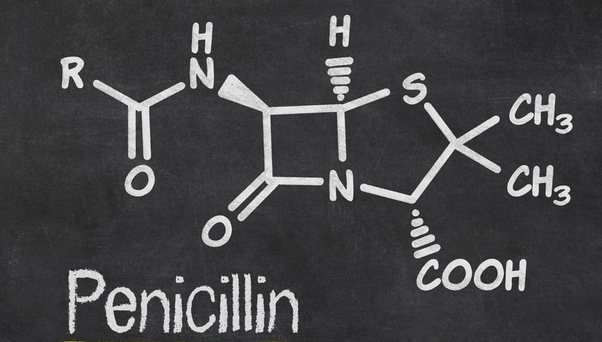 Penisilin mucidi Alexander Fleming kimdir?