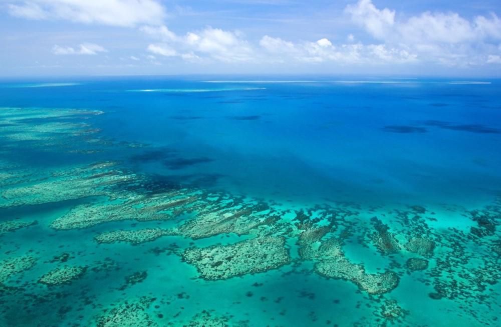 Büyük Set Resifi iklim değişikliği nedeniyle 2025'te yok olmaya başlayacak - 7