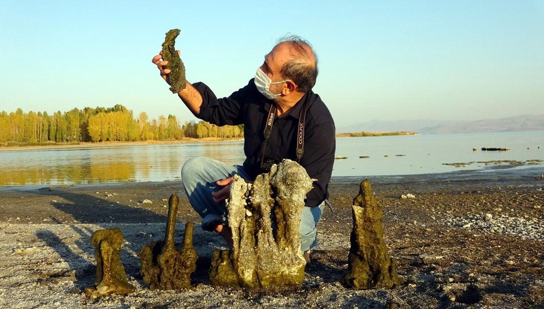 Van Gölü'nde sular çekilince mikrobiyalitler ortaya çıktı