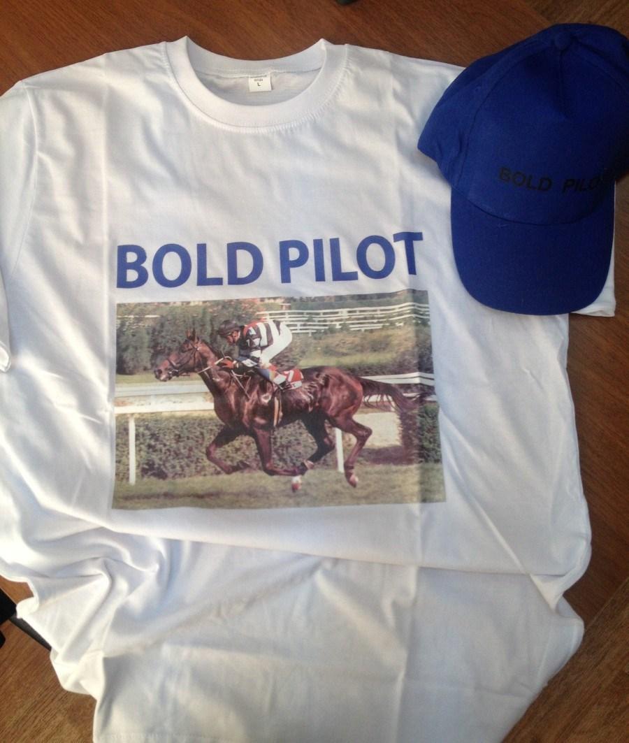 Bold Pilot adına hediyelik ürünler hazırlanan bir safkandı. (Fotoğraf: Yarış Dergisi)