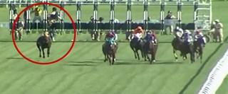 Bursa'da koşulan at yarışında Kupalım isimli ingiliz atın jokeyi; start verilmesinin hemen ardından düştü. Jokeyi olmadan koşan at yarışı 1. sırada tamamladı