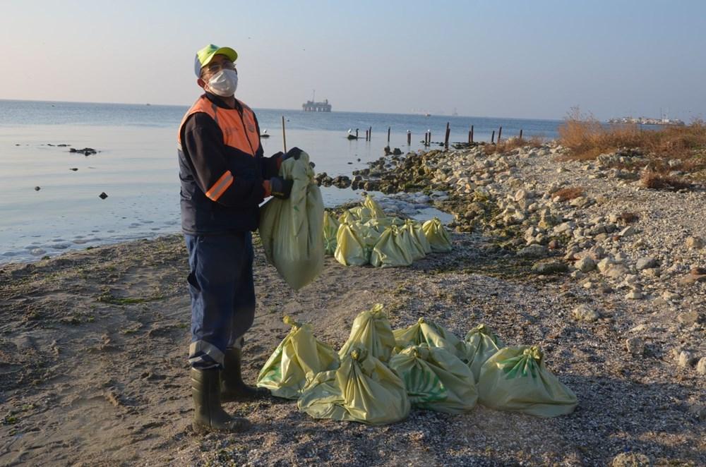 İstanbul'da korkutan dev denizanaları: Her biri en az bir kilo ağırlığında - 16