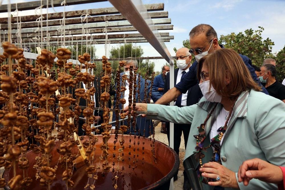 GastroAntep Festivali, fıstık hasadı ve şire yapımı ile başladı - 3