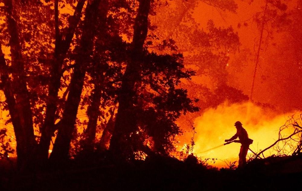 ABD'nin batısındaki orman yangınlarında ölü sayısı 15'e yükseldi - 2