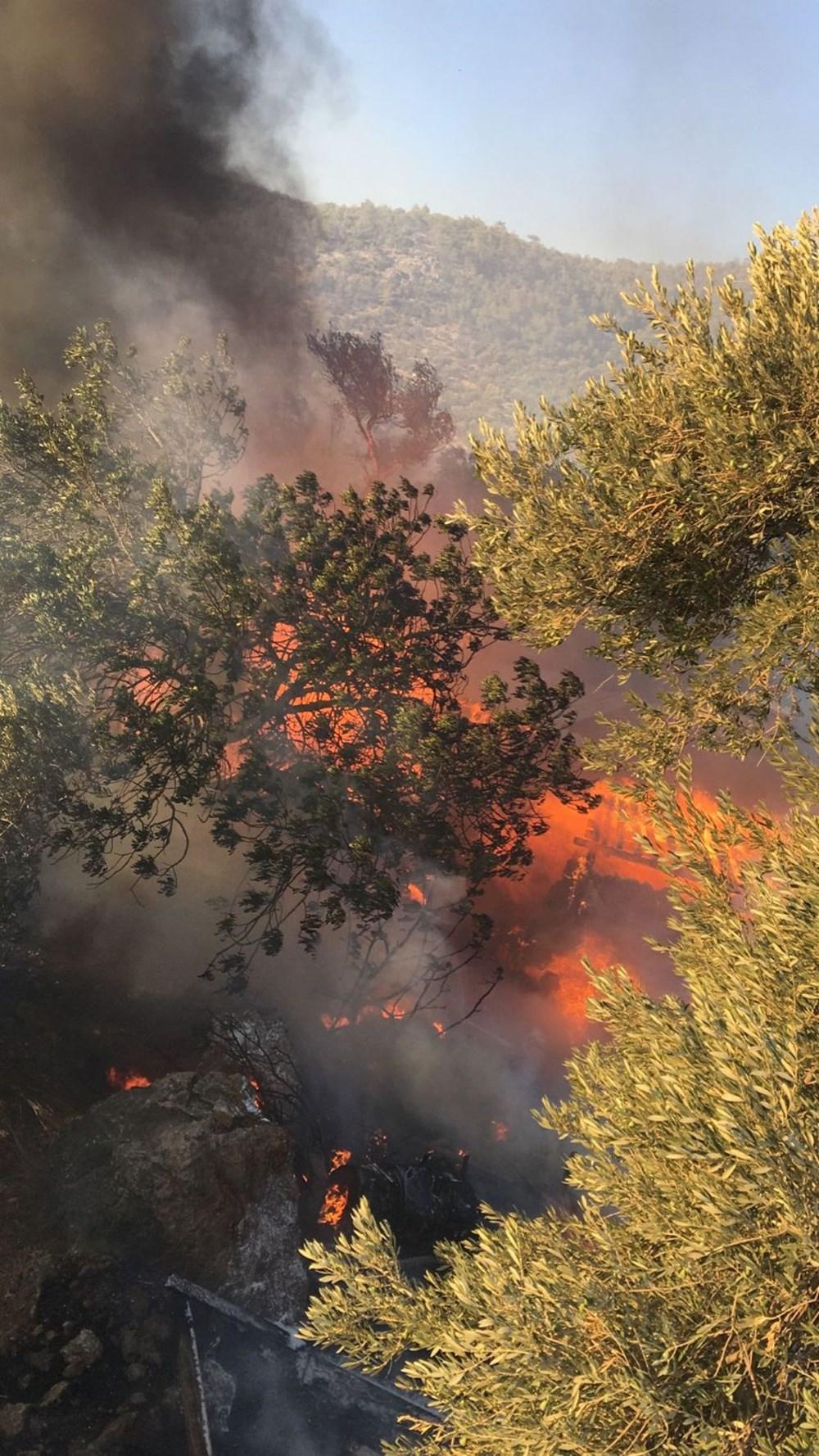 Antalya, Adana, Mersin ve Osmaniye'de orman yangınları - 12