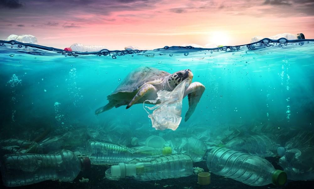 Plastik kirliliği Akdeniz'de kimyasal düzeylere ulaştı: Caretta carettalar ölüyor - 10