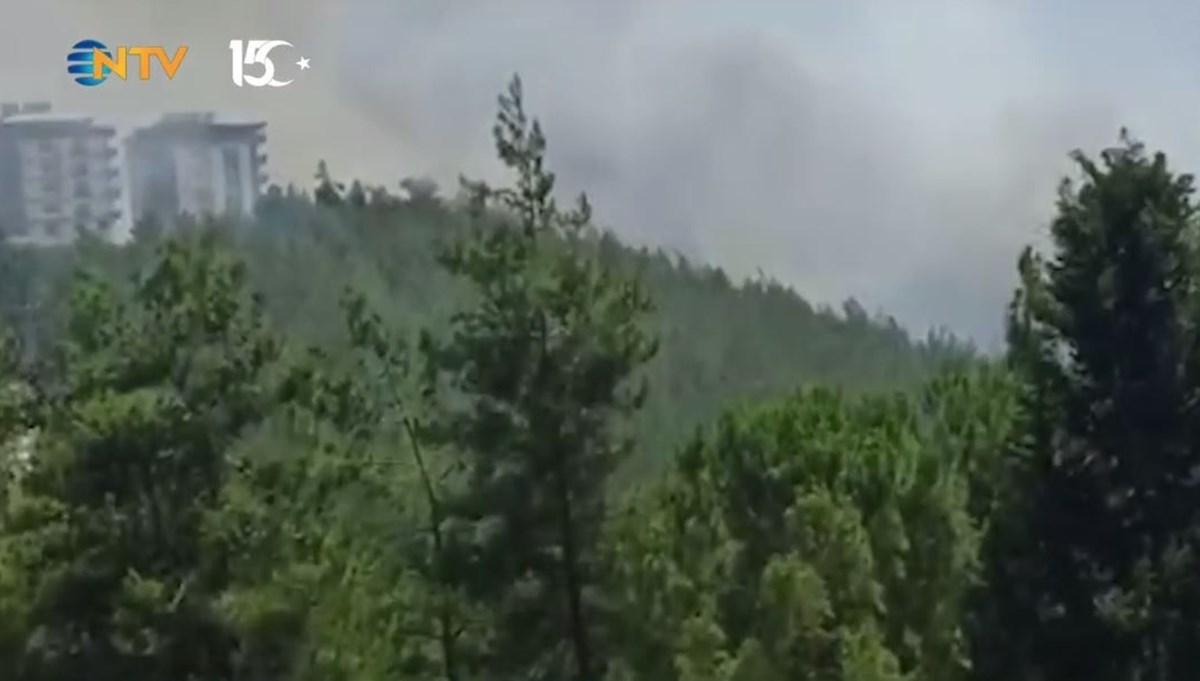 Osmaniye'de orman yangını: Alevler binalara yaklaştı