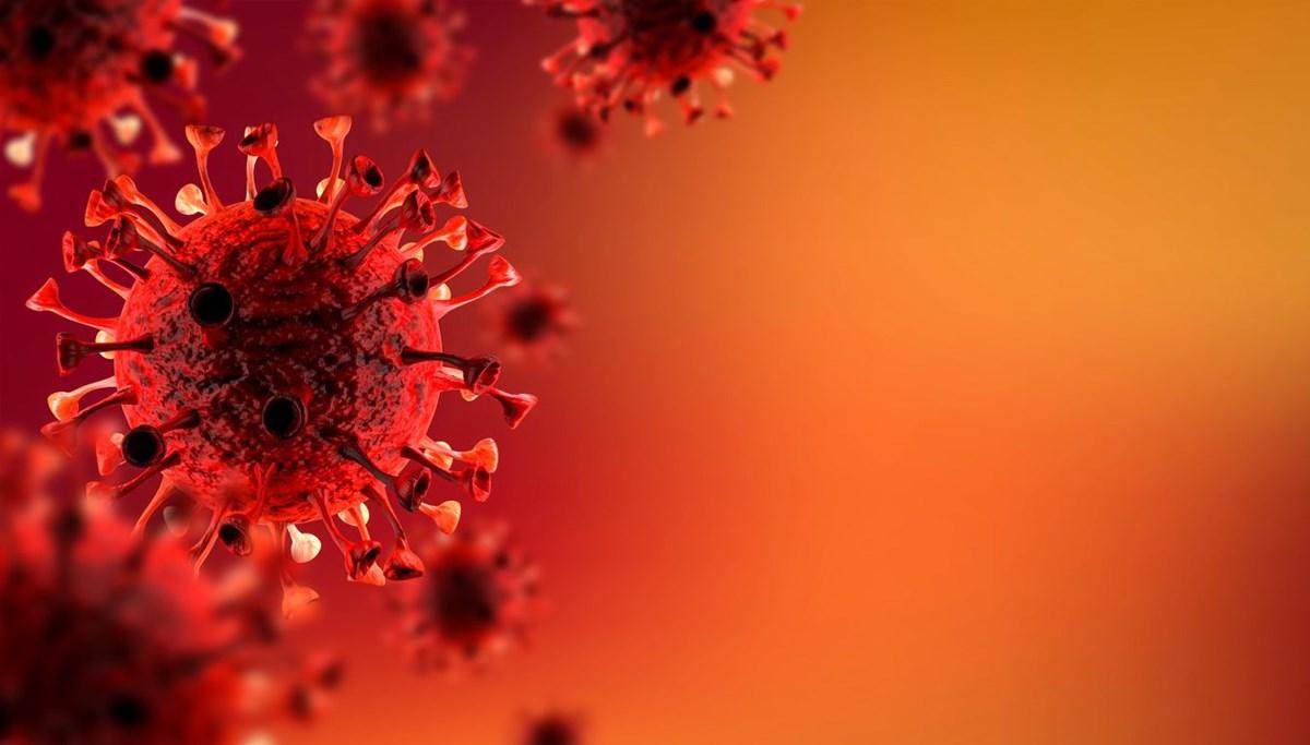 Araştırma: Gereksiz antibiyotik kullanımı Covid direncini körüklemiş olabilir