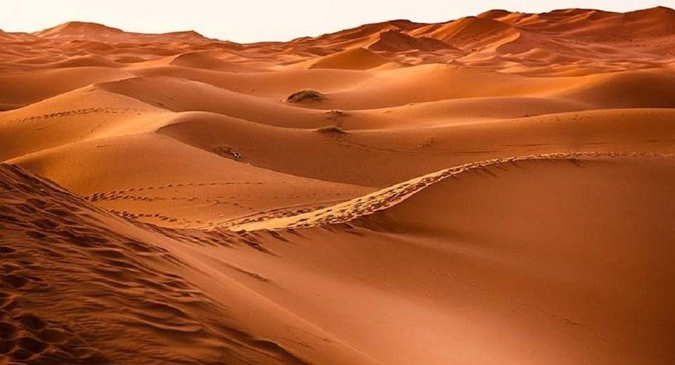 SUUDİ ARABİSTAN'DA 85 BİN YILLIK İNSAN KEŞFİ