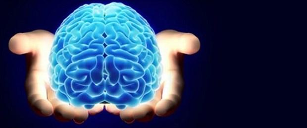 beyin-cinsiyet.jpg
