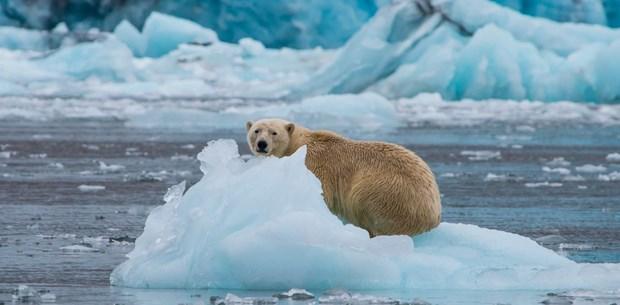 Bilim insanları uyardı Küresel deniz seviyesindeki artış hızlanıyor