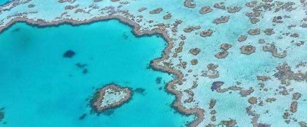 Büyük Set Resifi.jpg