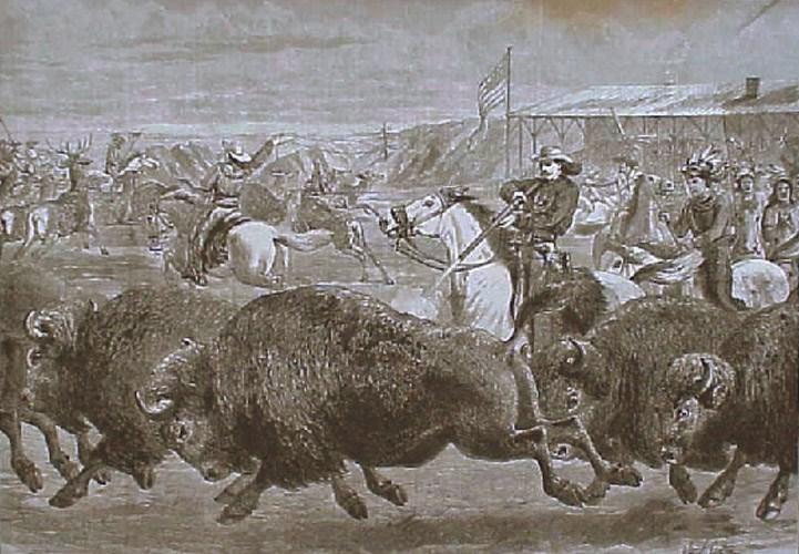 Buffalo Bill bufalolara ne yapıyordu?