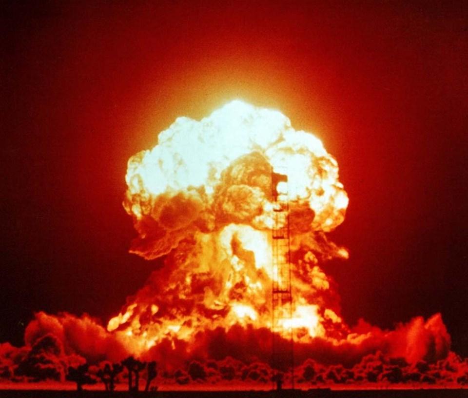 Nükleer savaştan sağ çıkması en muhtemel şey nedir?