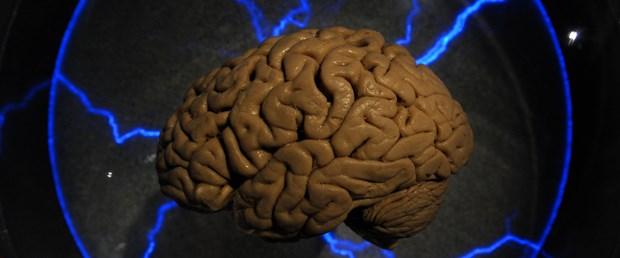 insan-beyni.jpg
