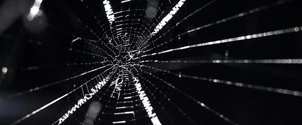 örümcek.jpg