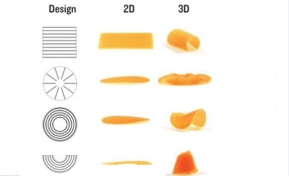 """Bilim insanları """"az alanda, daha çok gıda"""" prensibiyle hareket ederek jelatin-selüloz kompozitinin iki boyutlu filmlerinin suda çeşitli 3D şekillerde dönüştüğünü keşfettiler ve şekil değiştiren makarna üretmeyi başardılar."""
