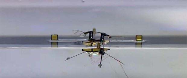 arı-robot.jpg