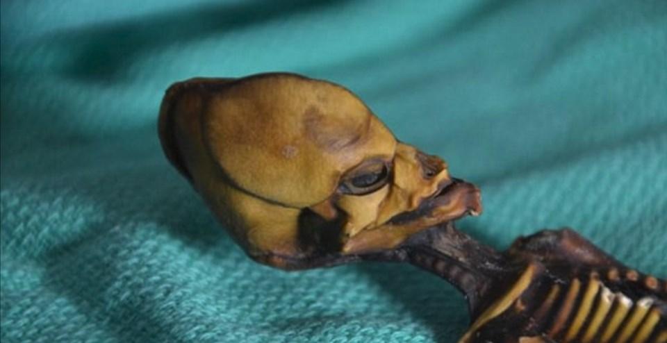 """Ata"" the mummy, Mumya, Arkeoloji, Genetik, Şili, Dunya, Bilim"