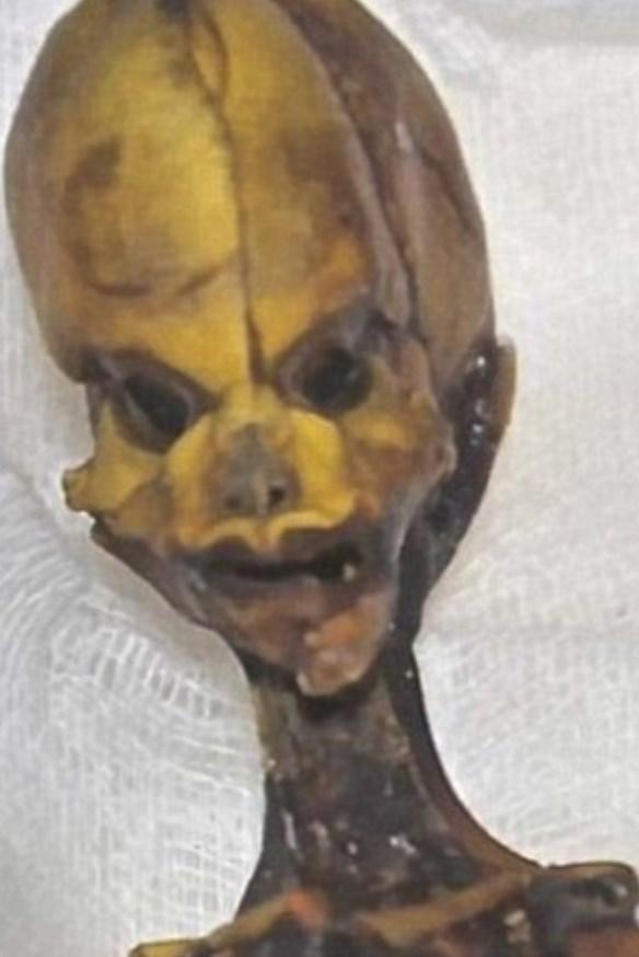 """Ata"" the mummy, Mumya, Arkeoloji, Genetik, Şili, Dünya, Bilim"