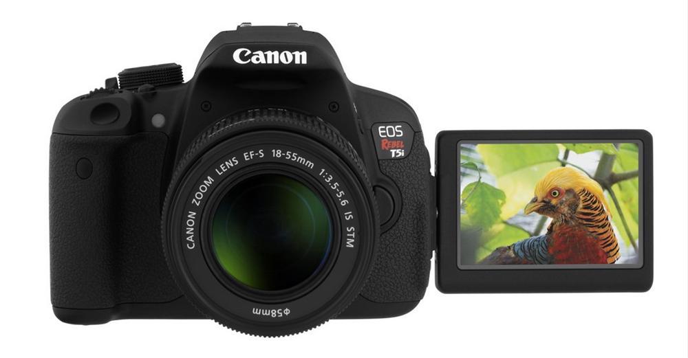 Yeni baslayanlar icin profesyonel fotograf makinesi
