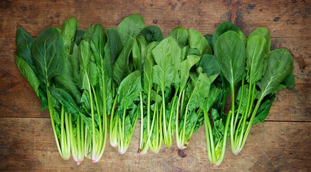 Bağışıklık sistemini güçlendiren besinler (50 sağlıklı besin) - 14