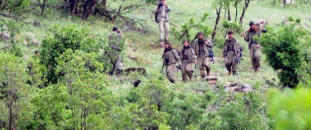 10 PKK'lı teslim oldu