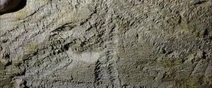 '13 bin yıllık resimler 5 yaşında bir kızın eseri'