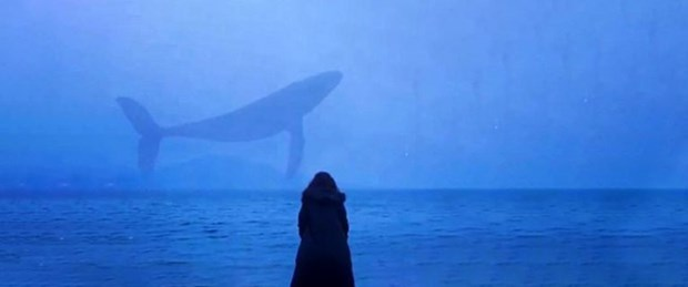 mavi balina oyunu.jpg
