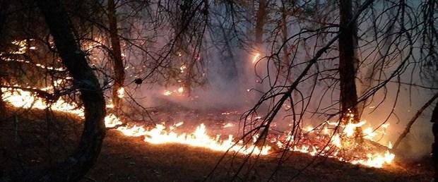 çorum orman yangını.jpg